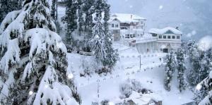 Delhi Shimla Manali Tour Packages