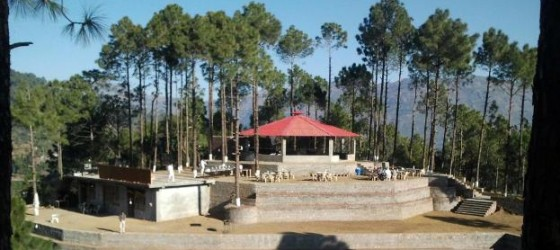 Shimla Himachal Travel Agent